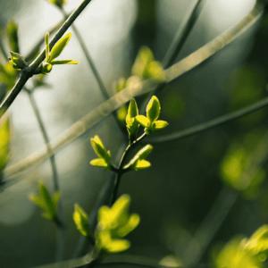 Jak mieć więcej energii u progu wiosny? Podpowiadamy!